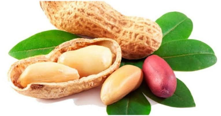 Groundnuts, Peanuts, Groundnuts benefits, Groundnuts uses, Groundnuts nutrition