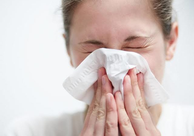 Allergy Overview: Causes, Symptoms, Treatments, and More